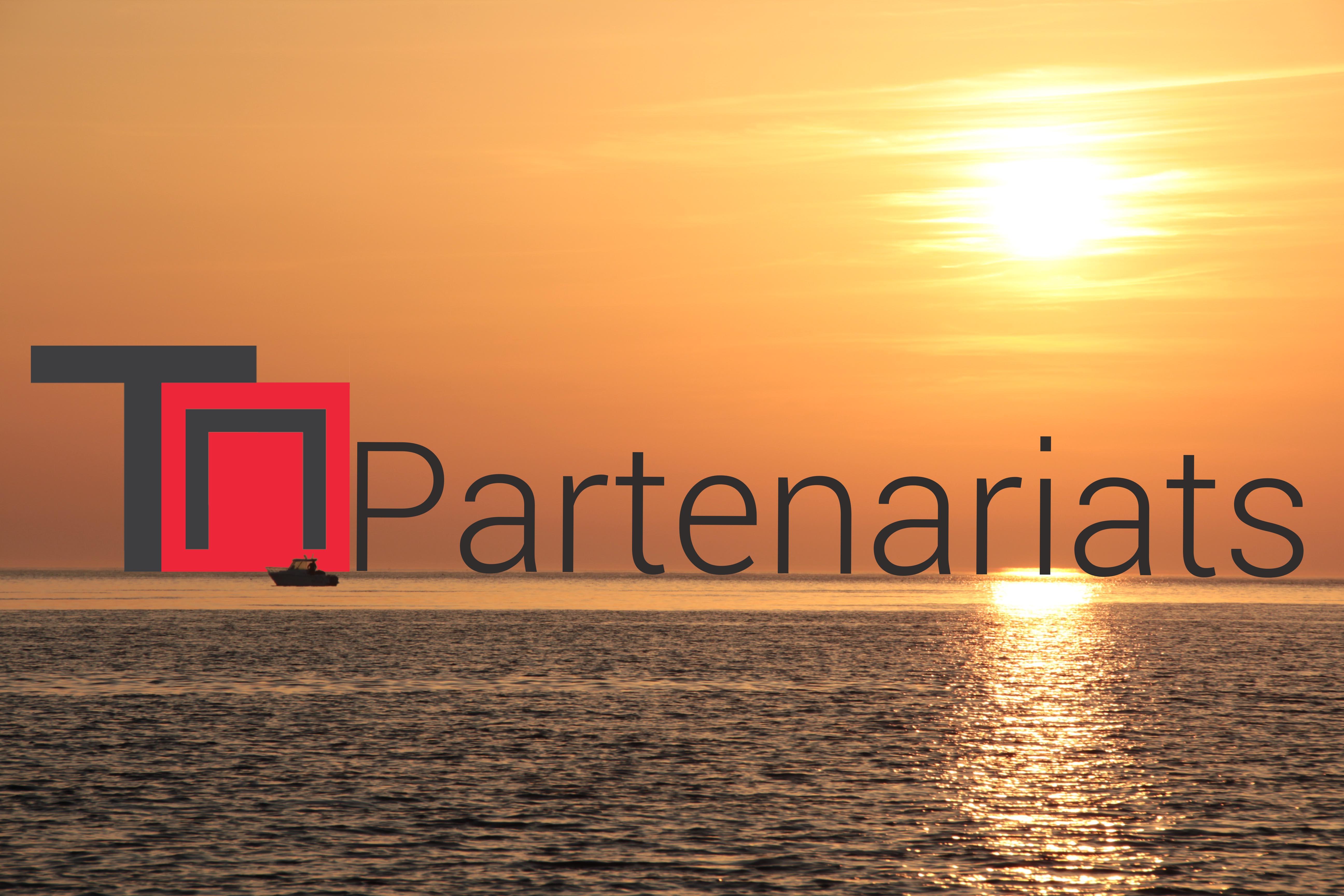 partenariat-low