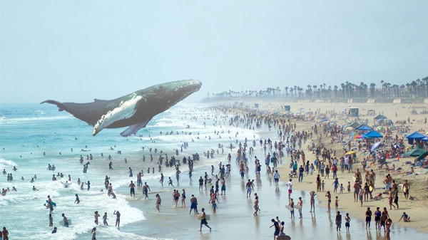 magic-leap-realitee-augmentée_technews